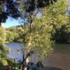 Mckenzie River, Willamette Forest