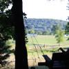 The Farm - Phil Camp (primitive)