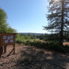 Hollyhock Farm Forest Retreat