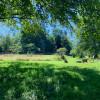 Camping at Hay Barn Creek, Hobart