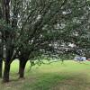 Greenleaf Farm Campsites