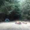 The Den Camp Site