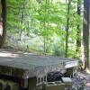 Tent Platform on Forest Edge