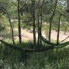 Aspen Grove Hammock Site #2