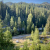 Wildflower Meadow - Creekside