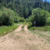 Willow Brook CG: Open Meadow