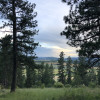 Big Pine Meadow