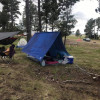 Goose Landing Wooded Tent Spaces