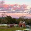 Glamping on a horse ranch!