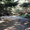 The Secret Den Camp Site
