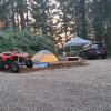 Camping at Carsner Tree Farm