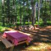 Woodland Grove Camping