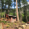 Lowland Forest Norwegian Cabin