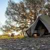 Bamboo Garden Yurt/Tent on Farm