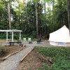 Farm Forest Glamping in Custer