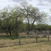Tom and Julia's horse ranch