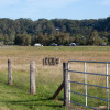 Bli Bli Valley Farm - Paddock Sites