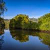 Bli Bli Valley Farm—River Campsites