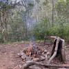 Relaxing Bush Camping @Camp 3