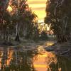 Billabong Camping near the Murray