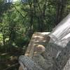 Wild Rose Sanctuary Farm Retreat
