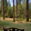 Hidden Forest Getaway