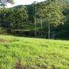 Wootton Dam View#2