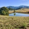 Sunny ridge camping site 1