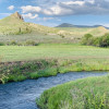 Fish & Camp Creek Side (Site #1)