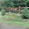 Thunder Hollow Camping