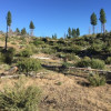 5 Acres with A Bluff