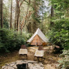 Feather + Fern Glamping