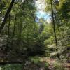 Barren River Magic Tent Camping