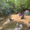 Mossy Spring Beach  - Camp at WGL