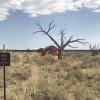 A Quiet primitive tent ⛺️ Spot