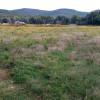 WyoFarm Field Camping