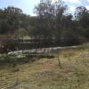 Mary River Farmstay - The Lake