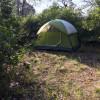 Forest Campsite near a Yoga Barn