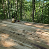 Forest sleeping porch