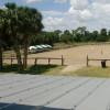Oak Hammocks and Horses