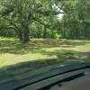 Wacissa Springs