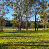 Camp at Wattle Valley Farm Wollombi