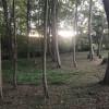 Woods Camping Among Farmland