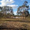 Mirrengatta, Clunes, Vic Camping 3