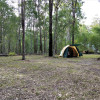 Cosy Tree Camp