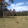 Bush Camping 3. Big Paddock