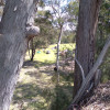 Bushcamping5. Secluded Amphitheatre