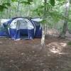 Into The Forest Primitive Campsite