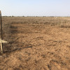 Open Plains of Texas
