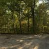 Hoosier Lakeside Forest-Lake Monroe